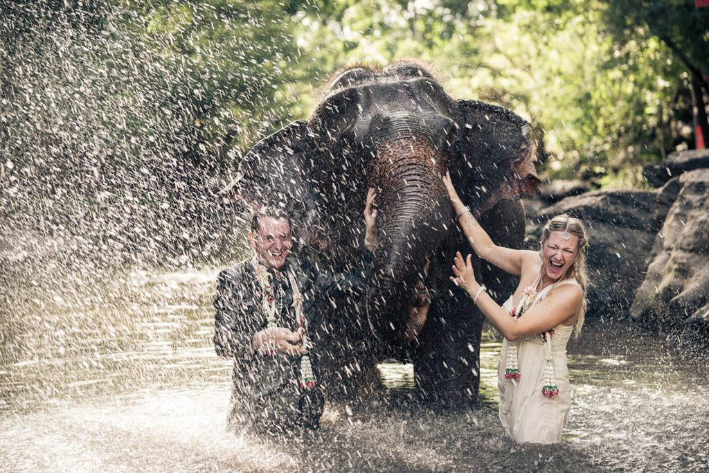 Wedding Couple Splash With Elephant