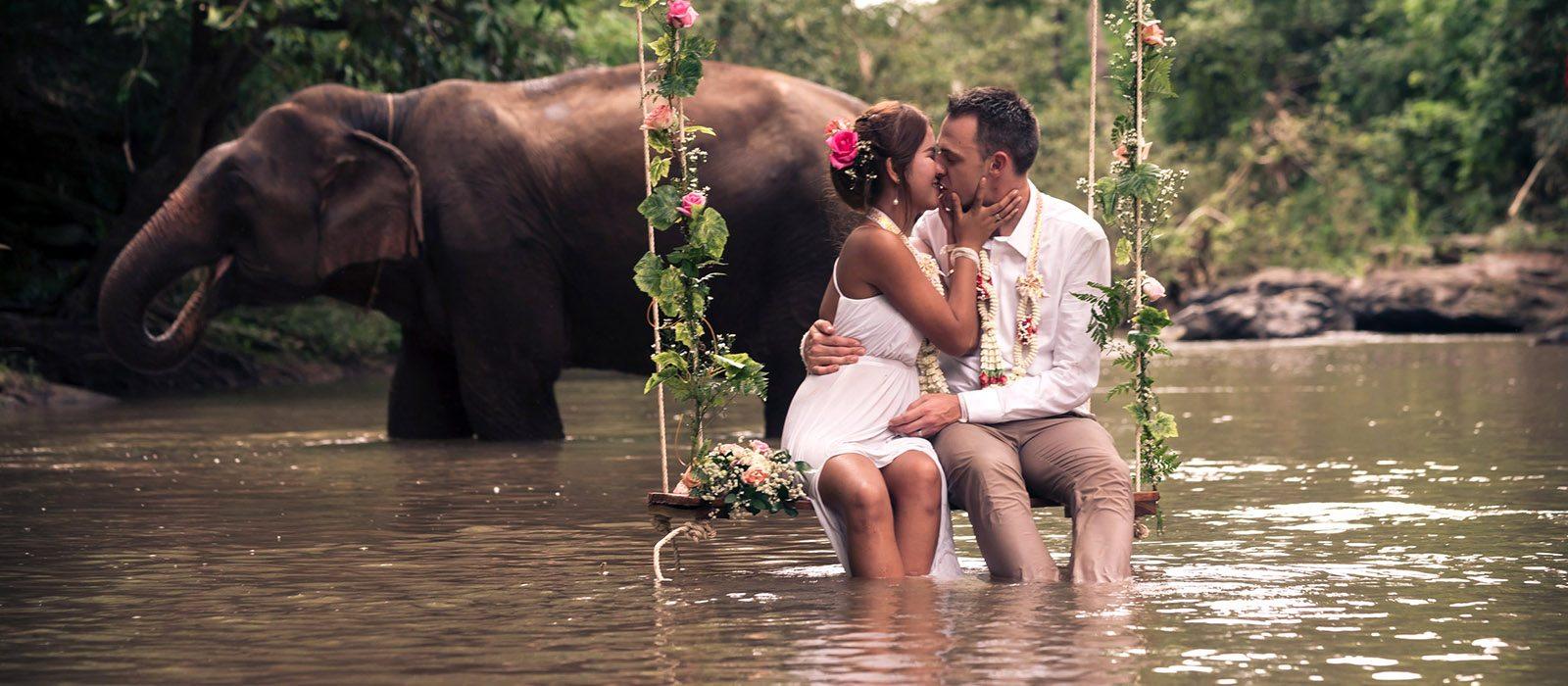 Chiang Mai elephant photo tour