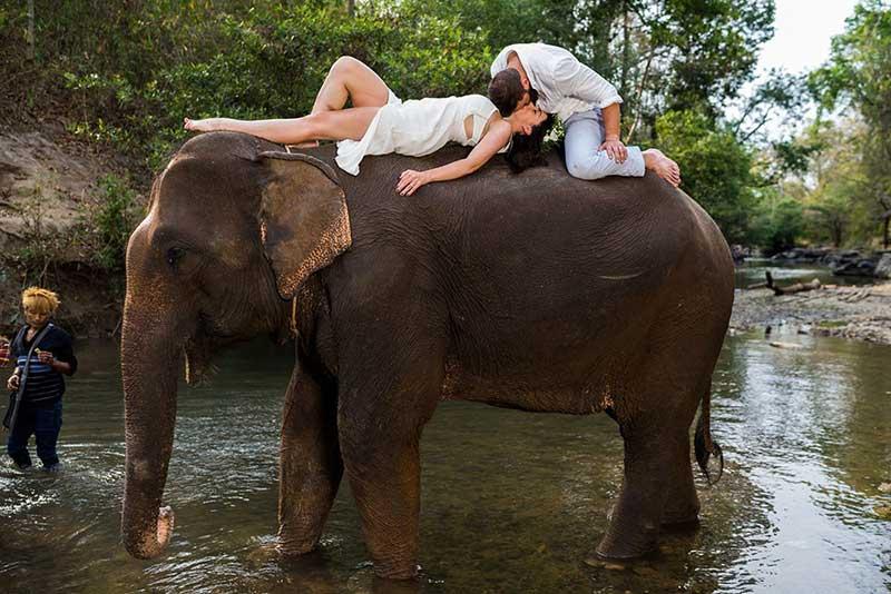 Chiang Mai pre-wedding eco elephant photo shoot
