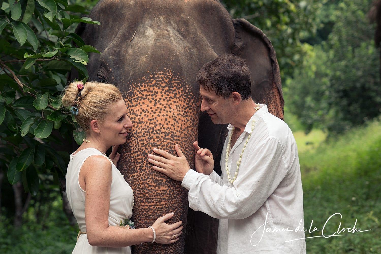Elephant Weddings Chiang Mai