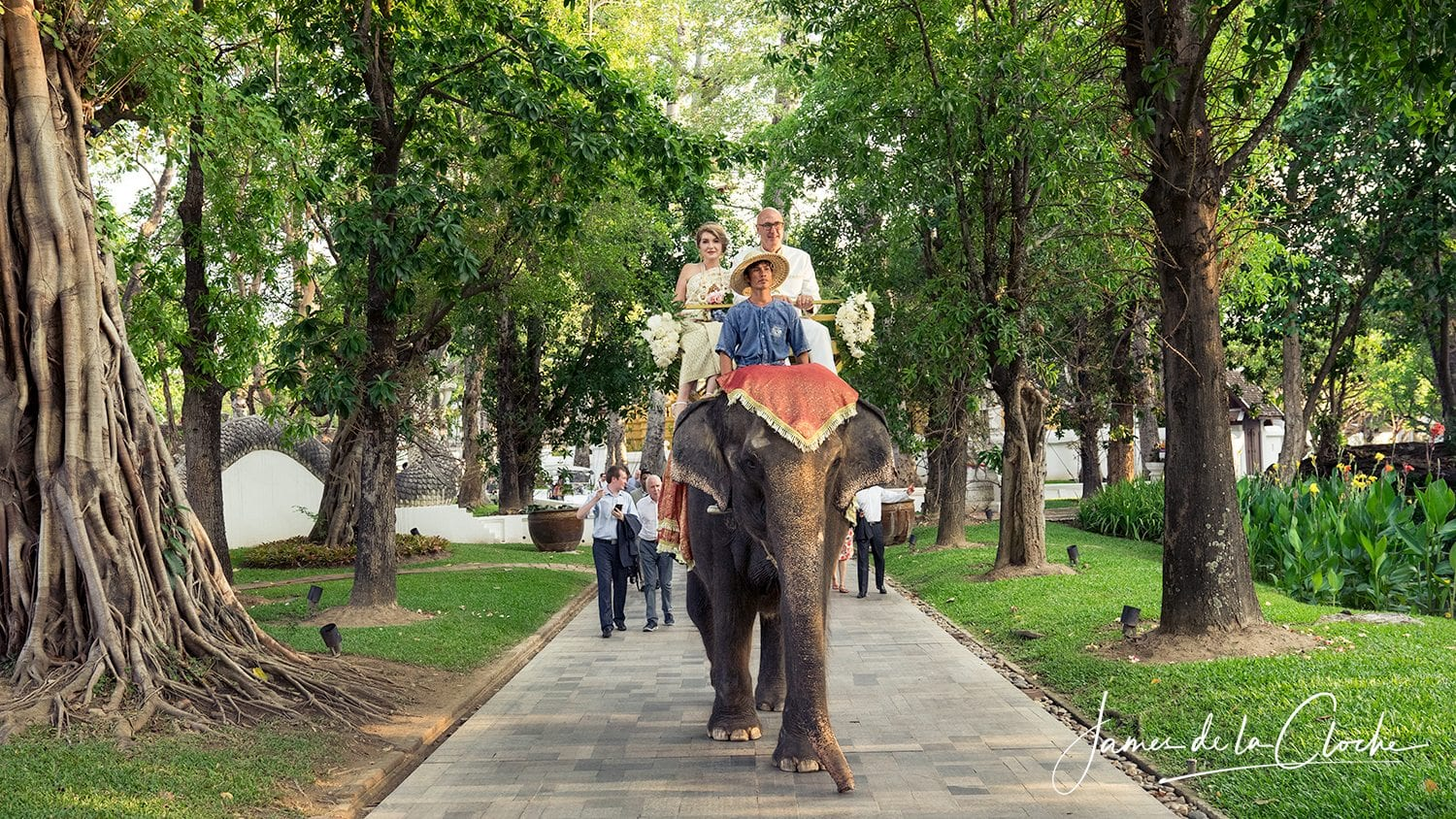 Dhara Dhevi Wedding Photographer Chiang Mai