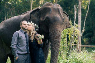 Elephant Photo Tour