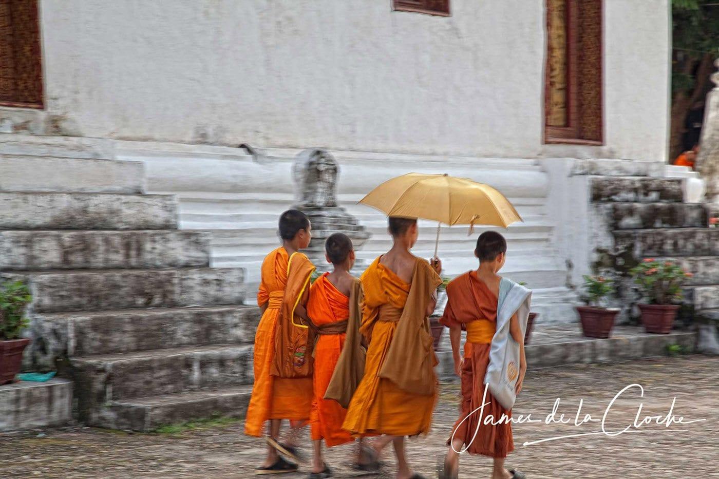 Young Monks Luang Prabang