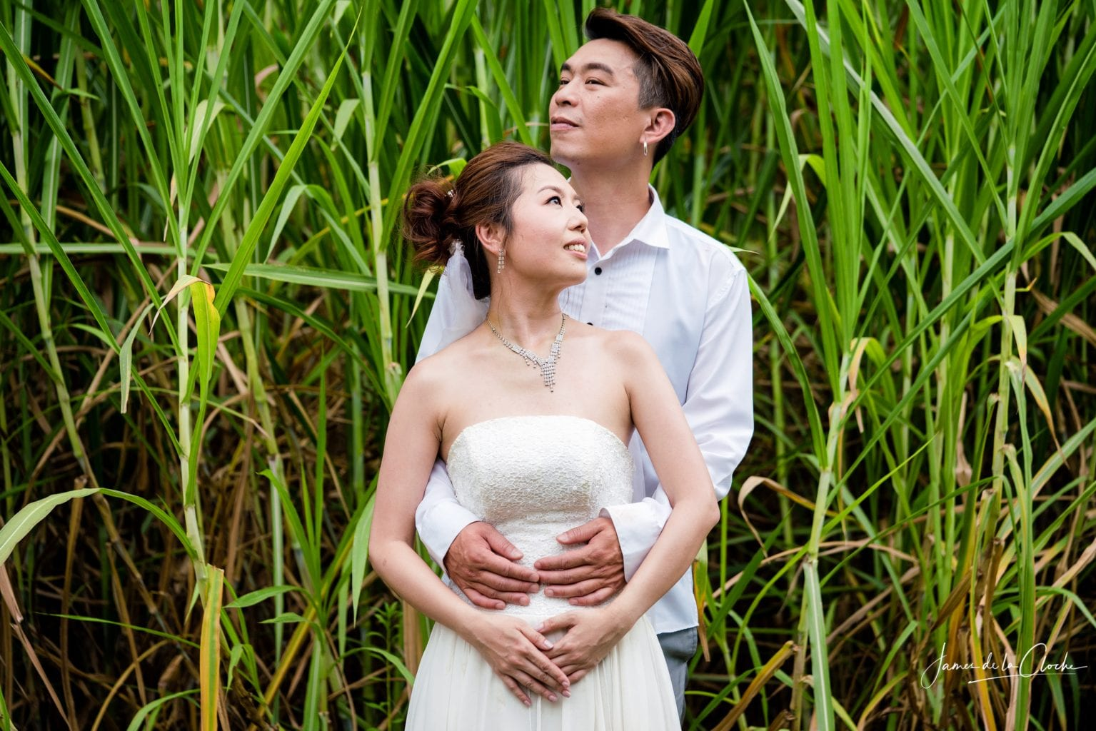 Chiang Mai Pre wedding photography