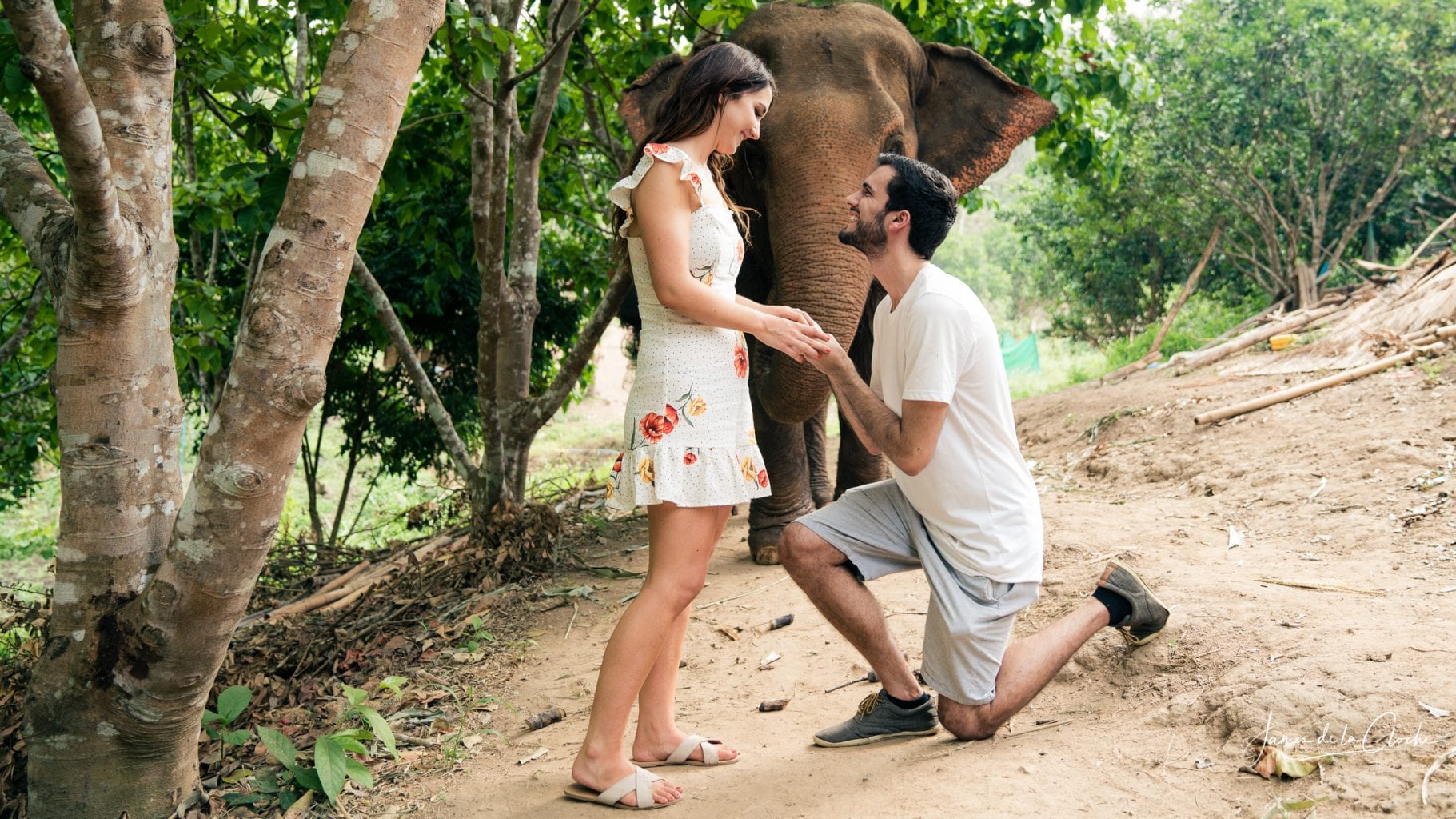 Chiang Mai Engagement