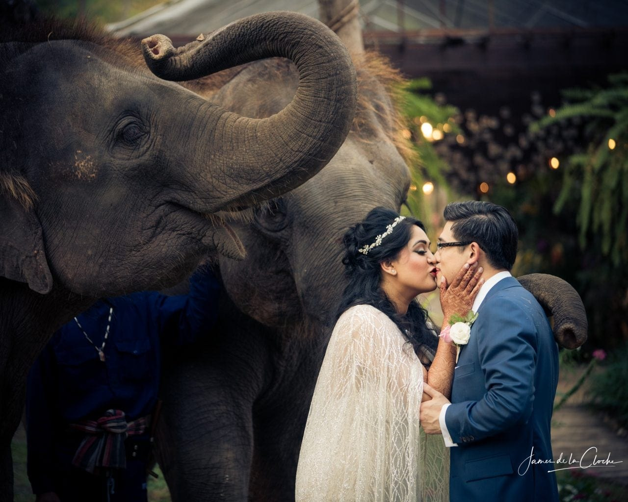 Bride and Groom Kiss and Elephants Watch