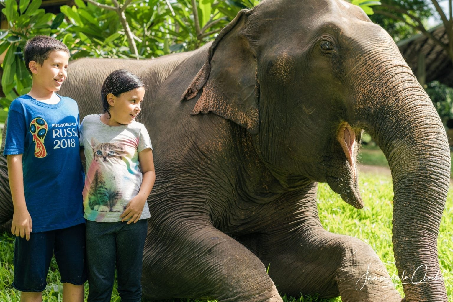 kids portrait with an elephant