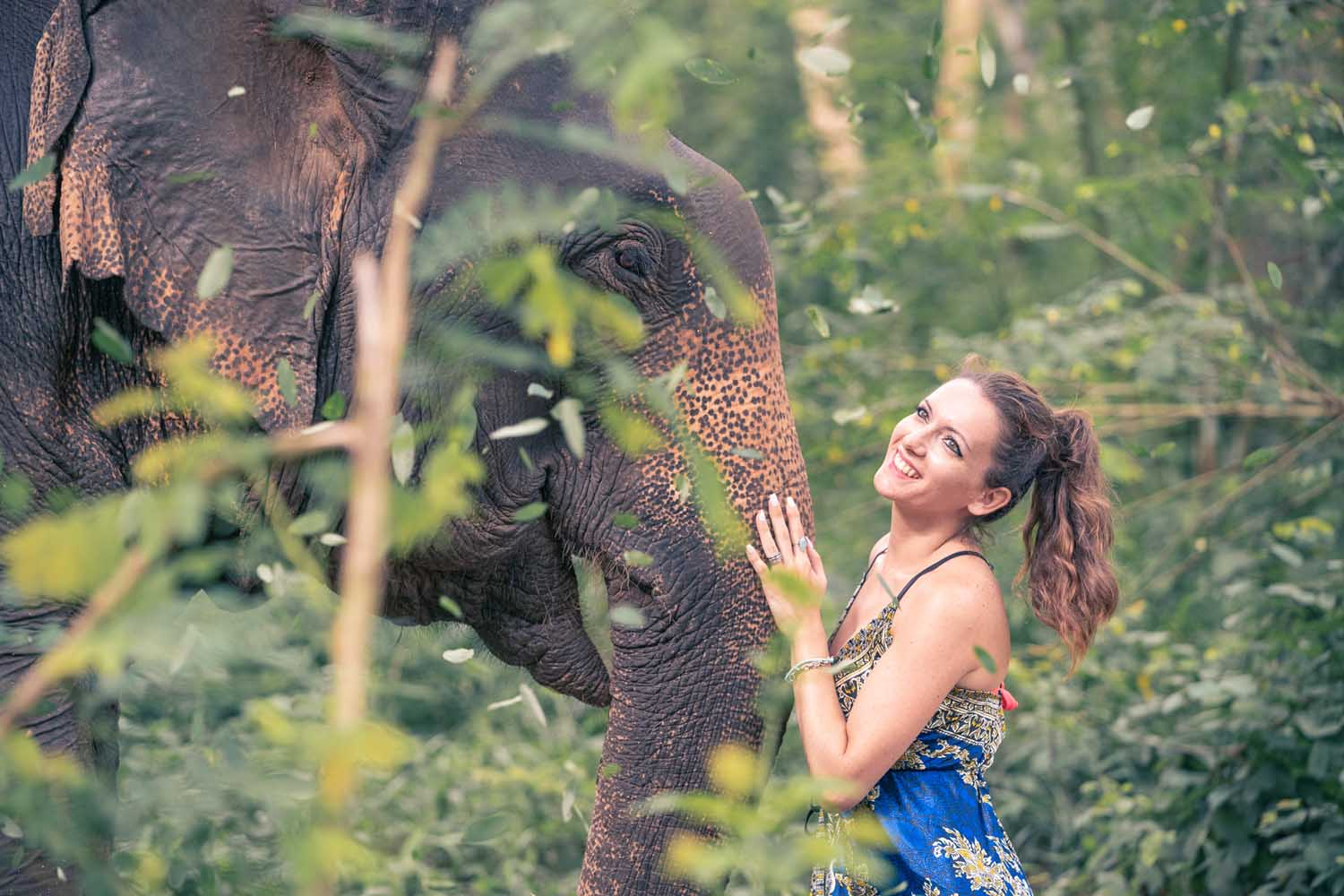Half day elephant tour Chiang Mai