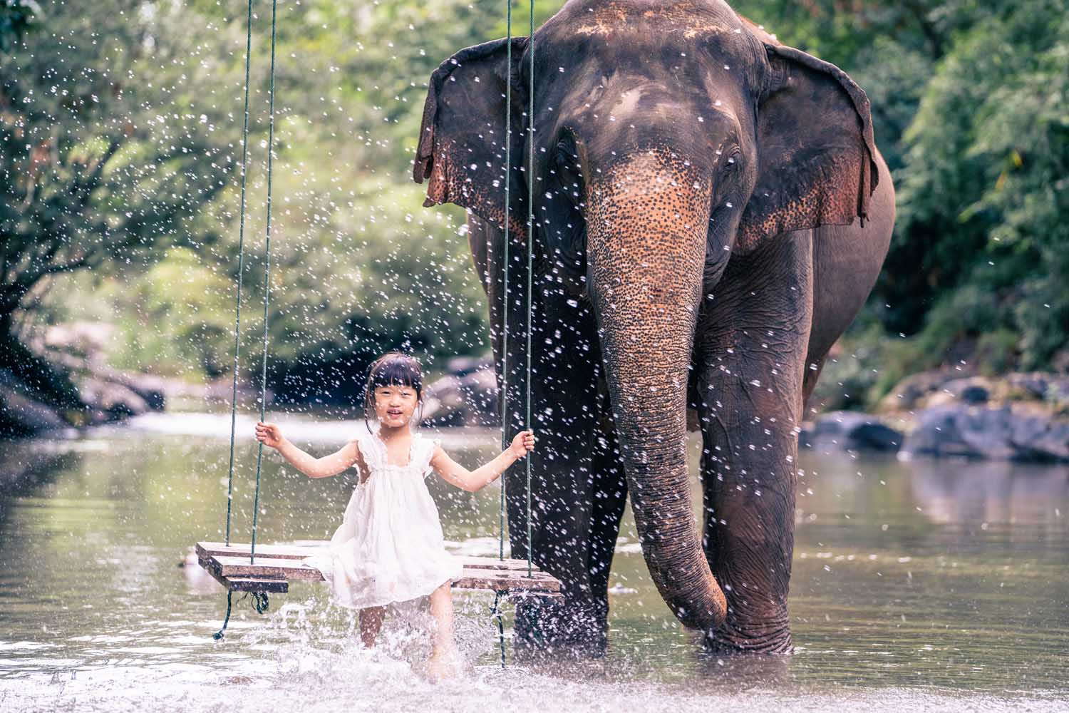 Child friendly elephant experiences