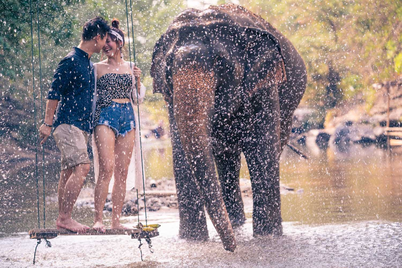 Chiang Mai elephant experience