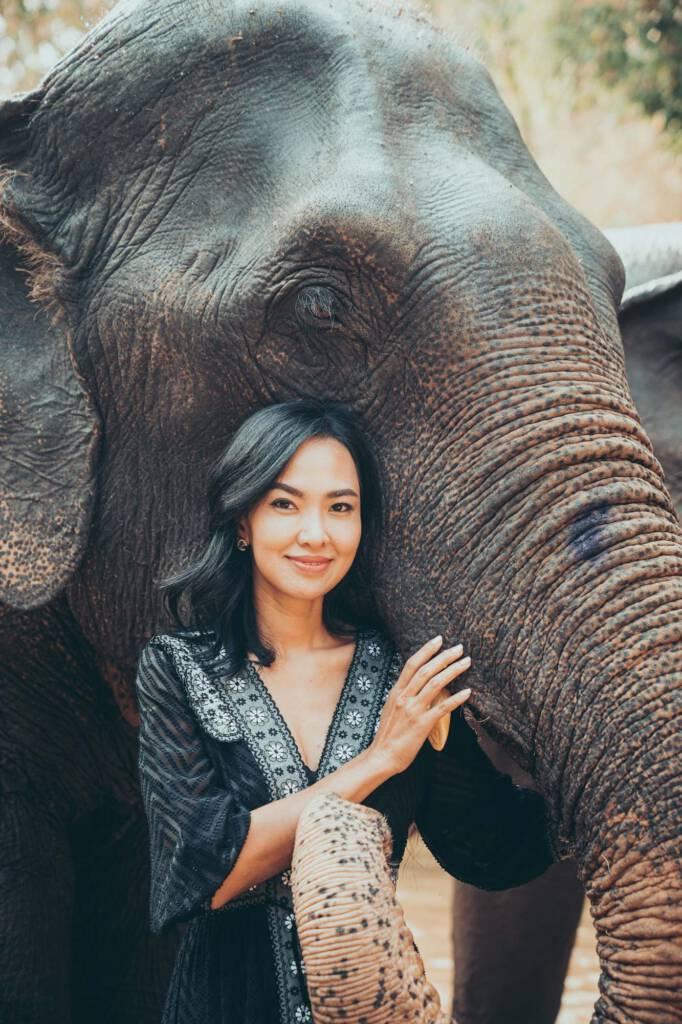 Paul Taylor & Friends Elephant Shoot Chiang Mai
